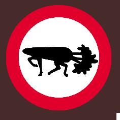 badge caro - Copie